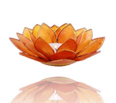 Lotus sacraal chakra met goudrand
