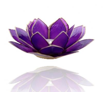 Lotus kruin chakra met goudrand
